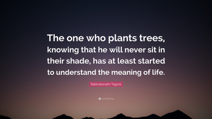 2124992-Rabindranath-Tagore-Quote-The-one-who-plants-trees-knowing-that-he